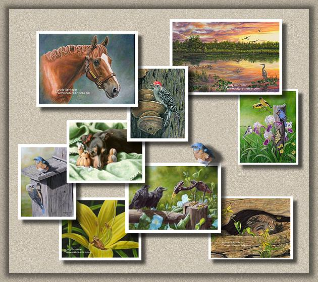 Wildlife paintings, wildlife art, wildlife artist, nature artist, flower paintings, flowers, birds, bird paintings, nature art, Pet Portraits; Portraits of Dogs, Cats, Horses, Flowers and Landscapes, Paintings by Judy Schrader.