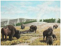 Nature painting of buffalo at yellowstone by Judy Schrader