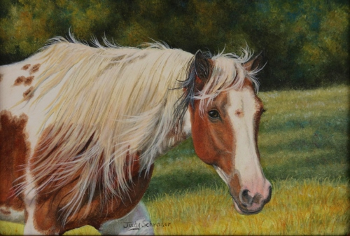 Original OIl Painting of a Registered Paint Horse. Horse Painting by Judy Schrader