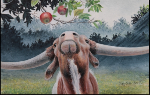 Original Miniature watercolor of a longhorn steer by Judy Schrader