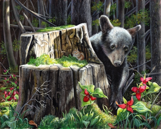Original Oil Painting of a black bear cub and chipmunk by Judy Schrader