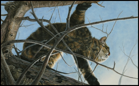 Original Oil Painting of a cat climbing a tree by Judy Schrader